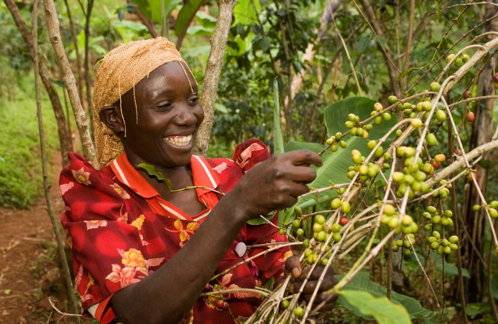 Circle of hands uganda is now an official member of the fair trade federation! in the global