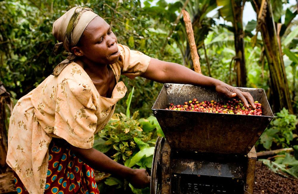 Fair Trade Coffee ~ Coffeebi ugandan coffee farmers smile as prices rise