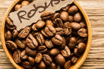 robusta beans