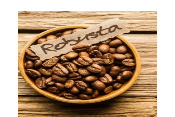 Vietnam Coffee: Robusta Prices Reached Their Highest In Five Years