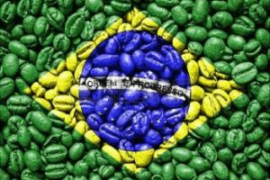 brasil flag made by coffee beans copertina
