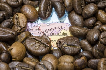 Honduras Coffee Production