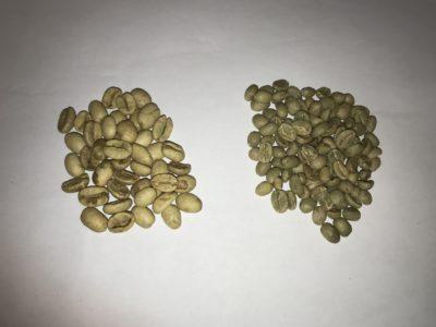 GREEN COFFEE – DENSITY