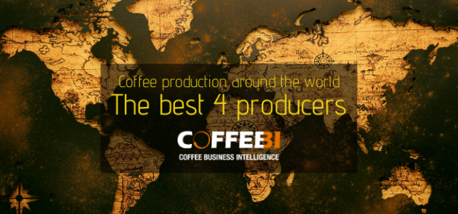 Coffee production around the world: the best 4 producers