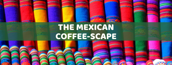 The Mexican Coffee-Scape