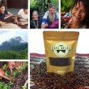 Kafe Balos organic wild and 100% authentic civet coffee